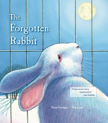 The Forgotten Rabbit By Furstinger, Nancy/ Lane, Nancy (ILT)